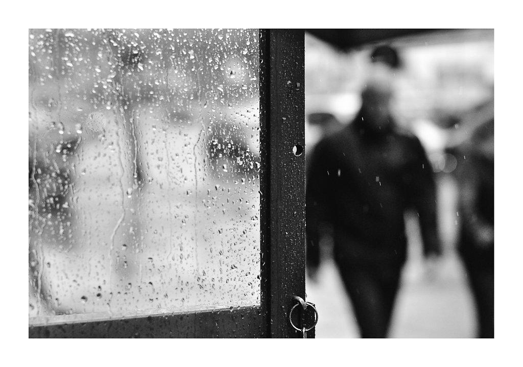 DSC0051-rainyday-canv.jpg