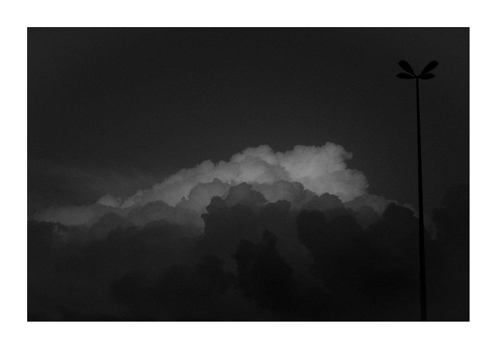 MDG5749-shades-canv.jpg